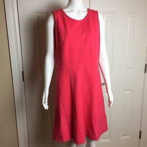 J. Crew | Dress | NEW with Tags | Size 12